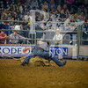 Rodeo Houston March 20 hr-1727
