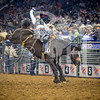rodeo houston march 20 hr-2623