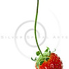 ripe red strawberry isolated on white background