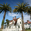 California houses and palm trees
