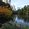 CENTRAL  PARK  IN  AUTUMN   -    Manhattan  NYC