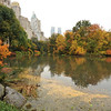 CENTRAL  PARK  IN  AUTUMN   /    The  Pond       -       Manhattan  NYC
