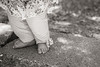 Little Feet<br /> M Monochrom, 50mm Summicron (Orange #16)