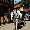 Carriage tour through Old Town