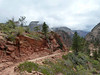 942 The West Rim Trail