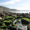 Low tide at Torrey Pines State Beach.