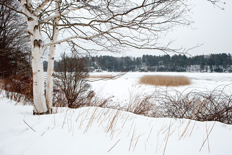 Spear Farm Estuary Preserve, Yarmouth, Maine.  Photograph taken by Portland, Maine based photographer Jeff Scher.