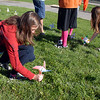 Jenna Ireland, eighth grader at Aspen Creek K-8 school, plants her pinwheels she made for the Pinwheels for Peace project on Wednesday at the school. Students from all grades planted pinwheels in the shape of peace signs. September 21, 2011 staff photo/ David R. Jennings