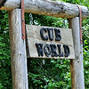 Welcome to Cub World!