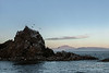 "Sunrise over the Baja Penninsula from Isla Carmen, Sea of Cortez, Baja, Mexico (best larger)<br /> <br /> Blue footed boobies, sea gulls, pelicans and cormorants are silhouetted on the jagged ridge of an off-shore rock.<br /> <br /> Other photos from the Sea of Cortez can be seen here: <a href=""http://goo.gl/vgIFF0"">http://goo.gl/vgIFF0</a>"