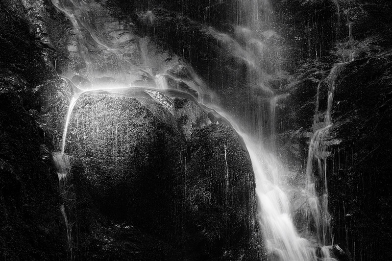 Berry Creek Falls Detail Monochrome No. 1
