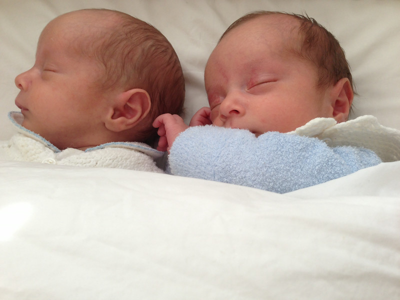 Sebastian and Orlando sleeping - 6 Weeks Old
