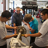 CTE - Automotive Westwood High School