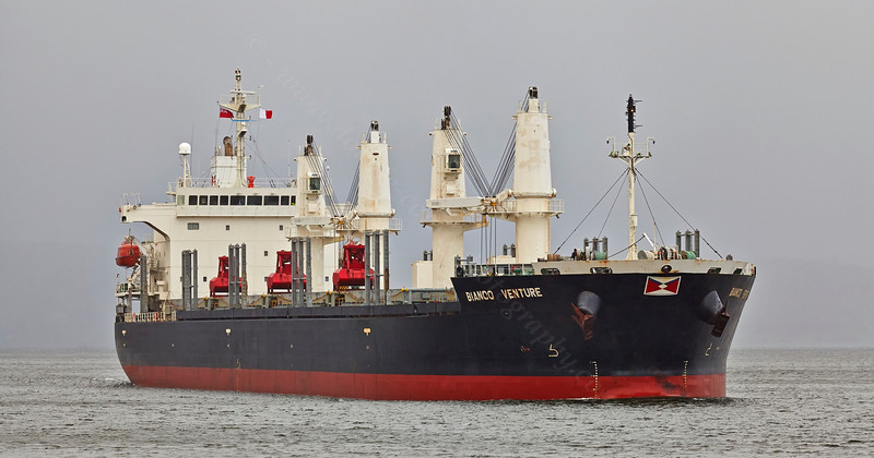 'Bianco Venture' passing East India Harbour - 15 March 2014