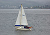 Yacht 'Contender' off  Cloch Lighthouse - 25 June 2014