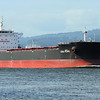 COAL PEARL<br /> IMO 9611931<br /> Built 2013