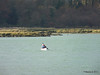 Kayak Marchwood PDM 08-12-2013 13-27-54