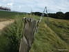 Eling Barbed Wire PDM 09-08-2014 17-48-060
