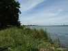 Along Bury Marsh Eling River Test Southampton PDM 17-07-2014 15-30-54