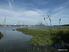 View from Bury Marsh Eling River Test Southampton PDM 17-07-2014 16-01-38