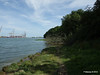 Along Bury Marsh Eling River Test Southampton PDM 17-07-2014 15-30-39