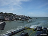 Cowes from RED EAGLE PDM 06-06-2014 15-09-25