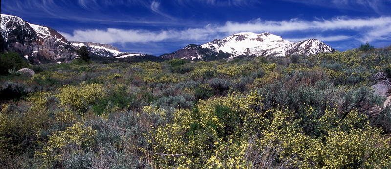 Mammoth Mountain, Springtime panoramic