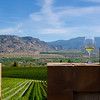 Wine bottle 3, Road 13 Winery, Oliver, South Okanagan, fall, winery, Darren Robinson