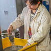 Hsin-Hui Yen filters crushed ore through a sieve as part of her research at the Mineral Industry Research Lab (MIRL) facility in the barn at the UAF Agricultural and Forestry Experiment Station.