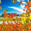 Some of the last colors of the fall linger on the Fairbanks campus on a recent afternoon.