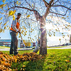 Grounds crew supervisor Raif Kennedy rakes leaves in Cornerstone Plaza on a September afternoon.