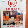 50km/h: Speed Kills! This is their home! Please stick to 50km/h! Kgalagadi Transfrontier Park, South Africa