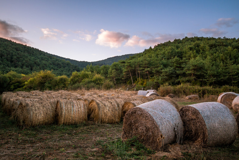 Hay Bales on the Camino - Spain