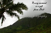 EVERY MOMENT, SCENIC VIEW, PALI HWY, OAHU