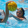 College Water Polo: Michigan Wolverines v Florida Gators