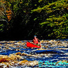 Autumn colors and boiling whitewater frame an open canoe at high flows in Twenty Day Rapids on Section 3 of the National Wild and Scenic Wolf River (USA WI White Lake)