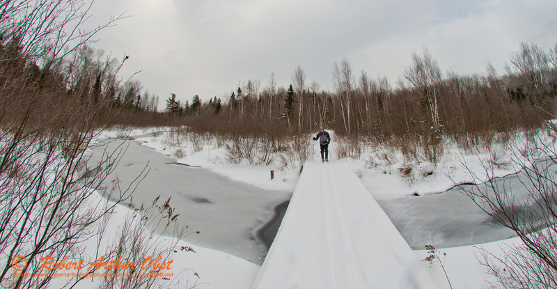Cross country skiing on the East Loop Trail across Mary Creek within the Jones Springs Management Area of the Nicolet National Forest (USA WI Townsend; Obst FAV Photos 2013 Nikon D800 Sports Fun Extraordinaire Action Outdoors Image 7700)