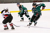 Shamrocks vs Cape Cod Storm_ 2 11-10-13-070_nrps