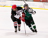 Shamrocks vs Cape Cod Storm_ 2 11-10-13-101_nrps