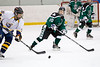 Shamrocks vs NH Avalanche 11-24-13-092_nrps