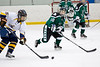 Shamrocks vs NH Avalanche 11-24-13-093_nrps