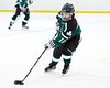 Shamrocks vs NH Avalanche 11-24-13-089_nrps