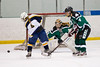 Shamrocks vs NH Avalanche 11-24-13-101_nrps