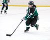 Shamrocks vs NH Avalanche 11-24-13-088_nrps