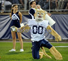 8/29/2014 Mike Orazzi | Staff<br /> The BYU Cougars mascot during the season opening game with UConn in East Hartford on Friday night.