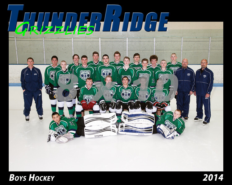 2014 TRHS Varsity Hockey 16x20 Team Photo