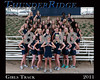 2010-11 TRHS Girls Track TEAM 16x20