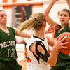 14 01 28 Towanda v Wellsboro GBB-148