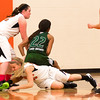14 01 28 Towanda v Wellsboro GBB-150