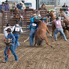 Wild Horse Race: Capture, saddle, and ride to the finish line.